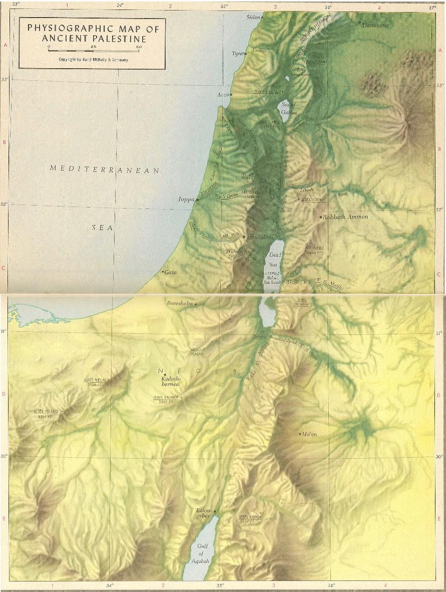 Palestine Topographic Map